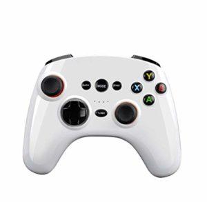 XHMCDZ Manette sans Fil, Joypad Ergonomique Rechargeable pour Jeux vidéo sur PC (Color : White)